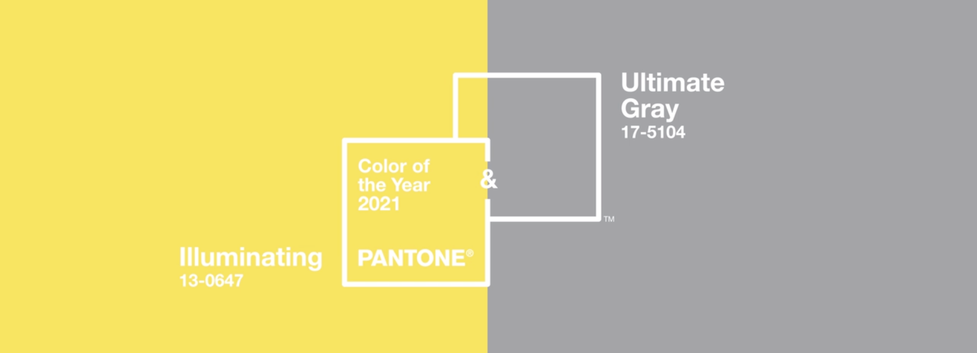 Palazzo Trend Report 2021| Pantone Colour of the Year 2021